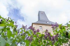 Torre da graduação Imagens de Stock Royalty Free