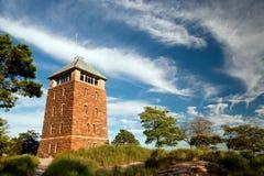 Torre da montanha do urso Fotos de Stock Royalty Free