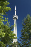 Torre da NC Fotos de Stock Royalty Free