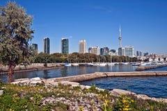 Torre da NC do panorama da arquitectura da cidade de Toronto Fotografia de Stock
