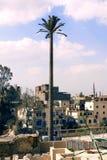Torre da pilha da palmeira Fotografia de Stock Royalty Free