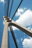 Torre da ponte Foto de Stock