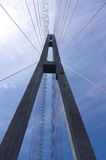 A torre da ponte cabo-ficada Foto de Stock Royalty Free