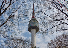 Torre da tevê em árvores de florescência da mola fotos de stock royalty free