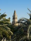 (Torre de Alminar en la catedral de la mezquita, Mezquita de Córdoba Anda Foto de archivo