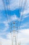Torre de alta tensão da transmissão no selvagem Imagem de Stock