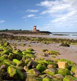 Torre de Archirondel, Jersey C.I Fotografia de Stock Royalty Free
