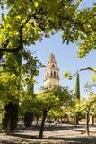 Torre de Bell da catedral de Mezquita, Córdova, Espanha Fotos de Stock