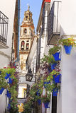 Torre de Bell da mesquita e da catedral de Córdova Imagem de Stock