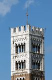 Torre de Bell do San Martino Cathedral em Lucca Imagens de Stock Royalty Free