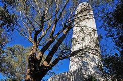 Torre de Coit Foto de archivo libre de regalías
