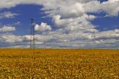 Torre de comunicación Fotografía de archivo libre de regalías