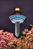Torre de control del aeropuerto de Singapur Changi en la noche Fotografía de archivo libre de regalías