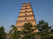 Torre de Dayan em Xi'an Fotografia de Stock