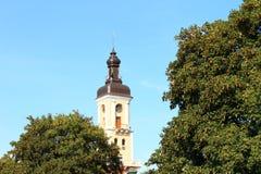 Torre de iglesia entre los árboles Fotografía de archivo