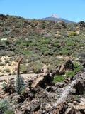 Torre de joyas bajo el Teide Imagen de archivo