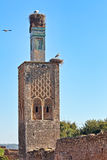 Torre de Kellah Foto de Stock Royalty Free