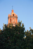 Torre de la catedral con el árbol en San Luis Potosi Imagen de archivo libre de regalías