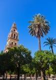 Torre de la catedral de la mezquita de Mezquita - Córdoba España foto de archivo libre de regalías