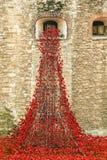 Torre de la exhibición WW1 de la amapola de Londres Imágenes de archivo libres de regalías