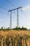 Torre de la línea eléctrica en el campo del centeno en la puesta del sol Foto de archivo