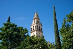 Torre de la mezquita de Codoba Fotos de archivo