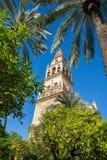torre de la mezquita de los codoba Fotos de archivo