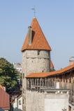 Torre de la pared de la ciudad de Tallinn Imagen de archivo libre de regalías