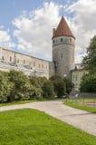 Torre de la pared de la ciudad de Tallinn Imagen de archivo