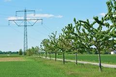 Torre de la transmisión como contaminación visual en paisaje rural del campo con los árboles y la trayectoria imagen de archivo libre de regalías