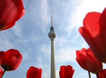 Torre de la TV, Berlín foto de archivo