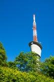 Torre de la TV en los árboles Sunny Summer Wireless Communica del verde del cielo azul Foto de archivo libre de regalías