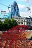 Torre de las amapolas de Londres Fotos de archivo libres de regalías
