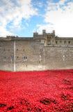 Torre de Londres com o mar das papoilas vermelhas para recordar os soldados caídos de WWI - 30 de agosto de 2014 - Londres, Reino Imagens de Stock
