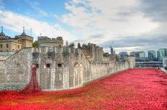 Torre de Londres com o mar das papoilas vermelhas para recordar os soldados caídos de WWI - 30 de agosto de 2014 - Londres, Reino Fotos de Stock