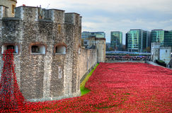 Torre de Londres com o mar das papoilas vermelhas para recordar os soldados caídos de WWI - 30 de agosto de 2014 - Londres, Reino Fotografia de Stock
