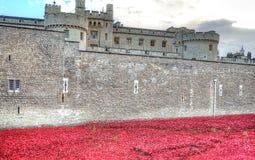 Torre de Londres con el mar de las amapolas rojas para recordar a los soldados caidos de WWI - 30 de agosto de 2014 - Londres, Re Imagenes de archivo