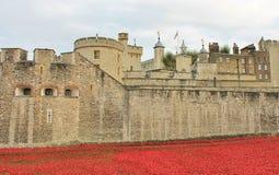 Torre de Londres con las amapolas Imágenes de archivo libres de regalías
