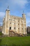 Torre de Londres, Inglaterra Imágenes de archivo libres de regalías