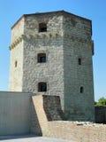 Torre de Nebojsa Fotografía de archivo libre de regalías