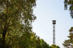 Torre de observação alta entre as árvores imagem de stock