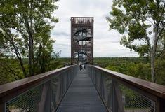 Torre de observação em Anyksciai Lituânia Imagens de Stock