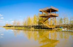 Torre de observación en lado del lago Foto de archivo libre de regalías