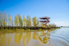 Torre de observación en lado del lago Fotos de archivo libres de regalías