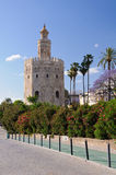 Torre de Oro - Sevilla, Spain. Stock Images