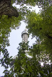 Torre de Petrin Fotos de Stock Royalty Free