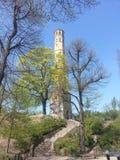 Torre de Prenzlauer Foto de Stock
