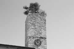 Torre de reloj aislada con un jardín y campanas en el tejado Fotos de archivo libres de regalías