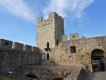A torre de Stefan da déspota imagens de stock royalty free