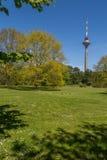 Torre de Tallinn TV Imagen de archivo